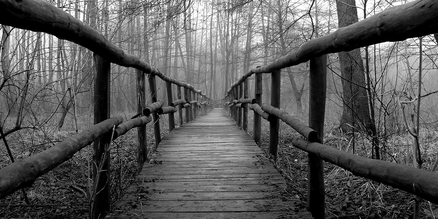Black and white photo of a bridge